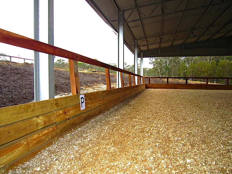 arena fence 2